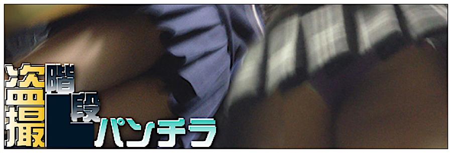 無修正おまんこ動画|追い撮り!!階段パンチラ|丸見えまんこ
