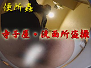 無修正おまんこ動画|寺子屋・洗面所盗SATU|おまんこパイパン