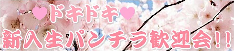 無修正おまんこ動画|ドキドキ❤新入生パンチラ歓迎会|無毛おまんこ