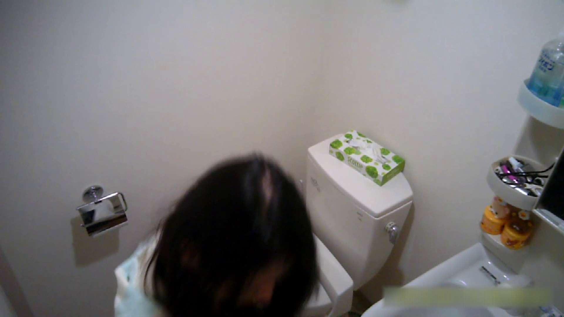 無修正おまんこ動画 清楚な顔してかなり敏感なE子25歳(仮名)Vol.04 トイレ編 怪盗ジョーカー