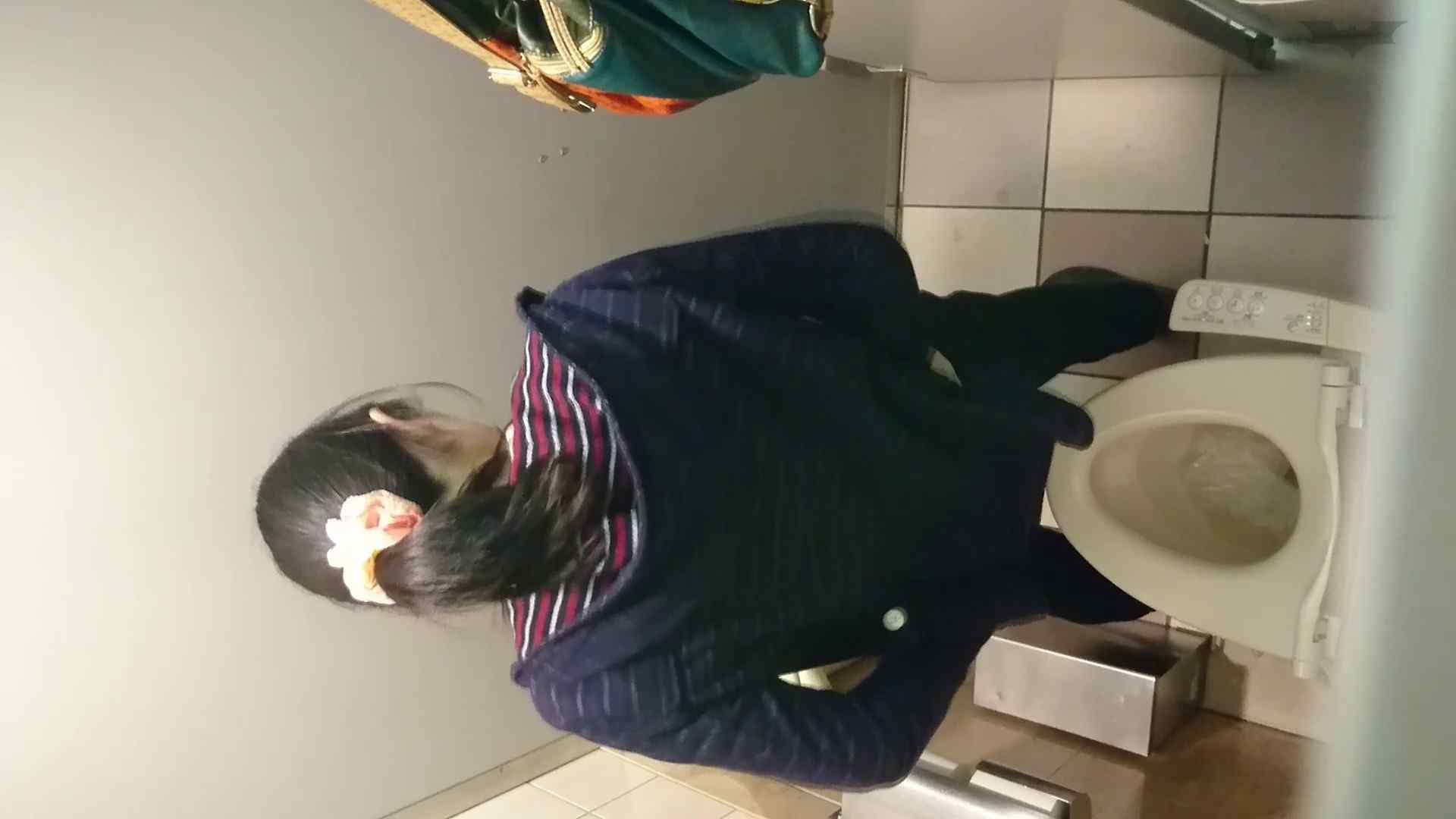 無修正おまんこ動画|化粧室絵巻 ショッピングモール編 VOL.18|怪盗ジョーカー