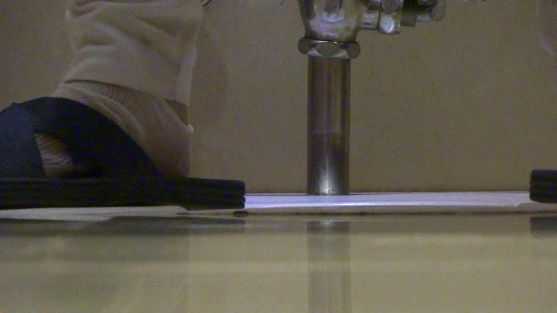 無修正おまんこ動画|「噂」の国の厠観察日記2 Vol.15|のぞき本舗 中村屋