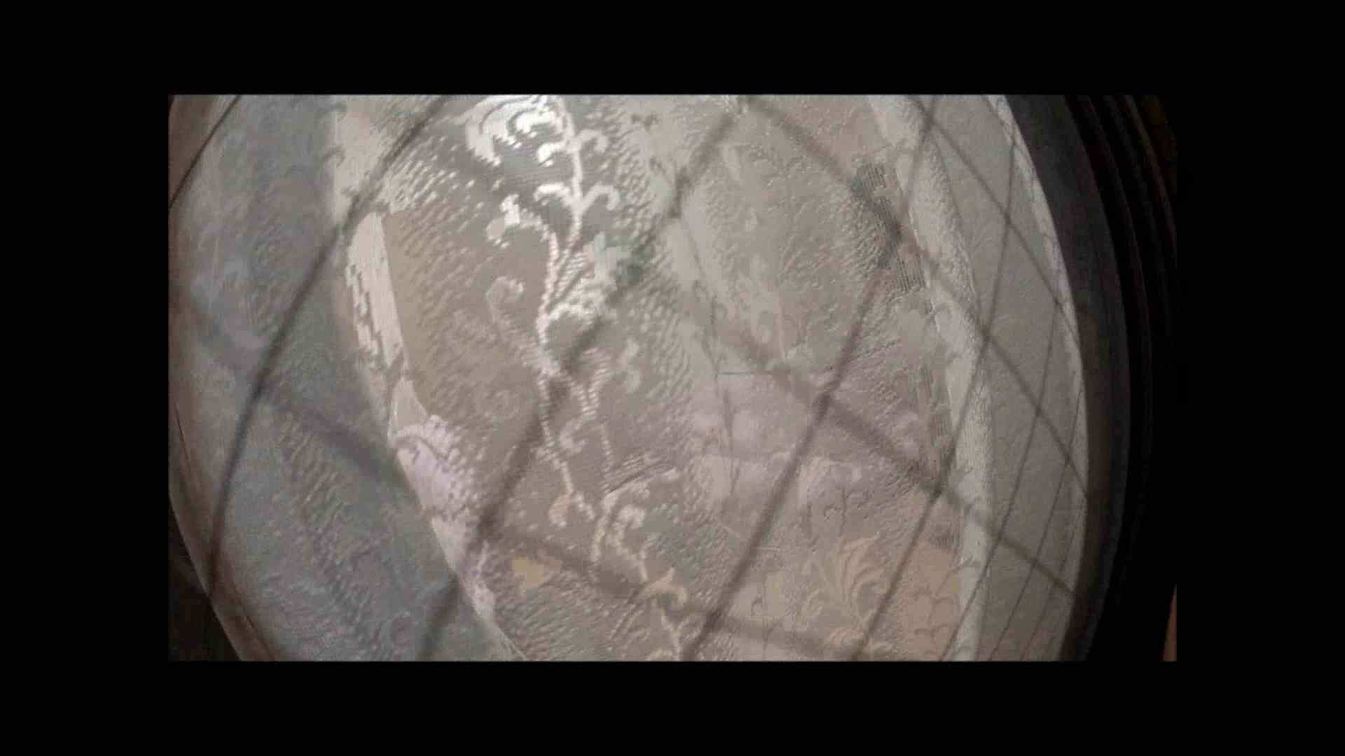 【04】別の日・・・魚眼レンズで広角に撮れました。 家宅侵入  31連発 4