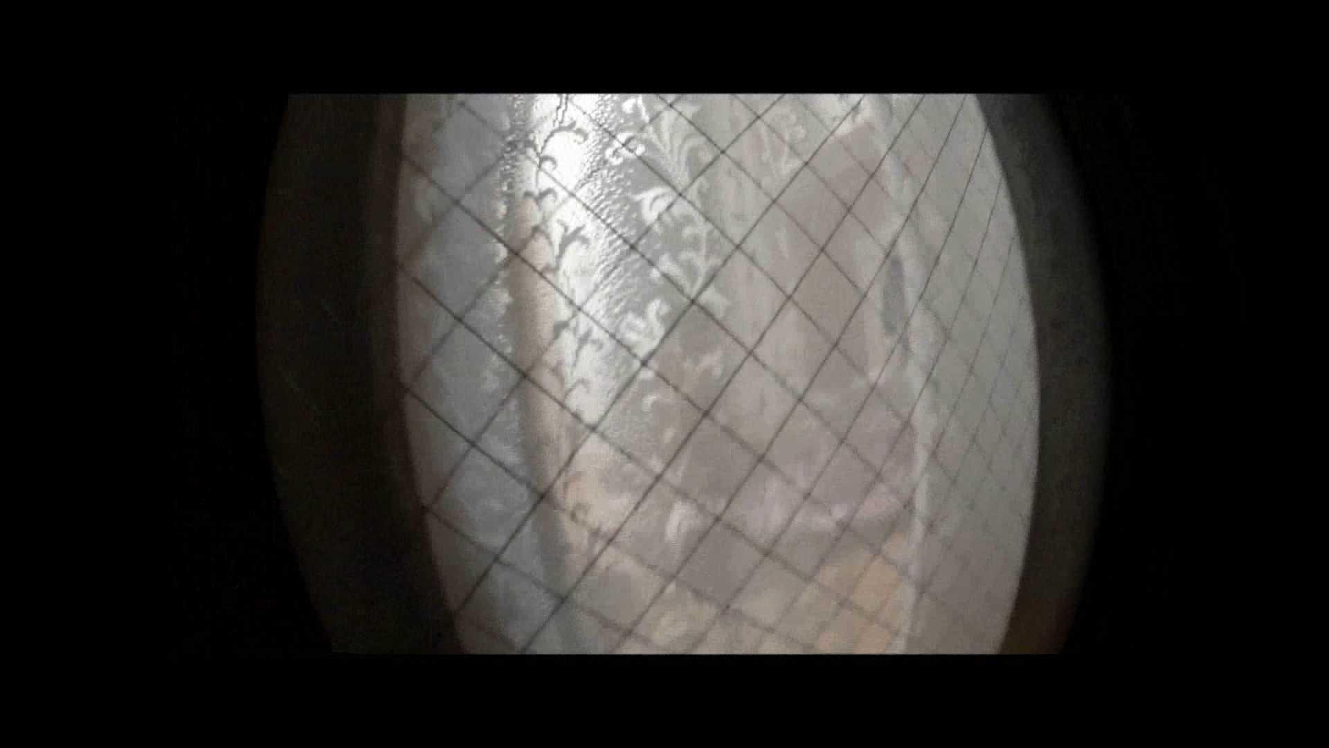 【04】別の日・・・魚眼レンズで広角に撮れました。 家宅侵入  31連発 19
