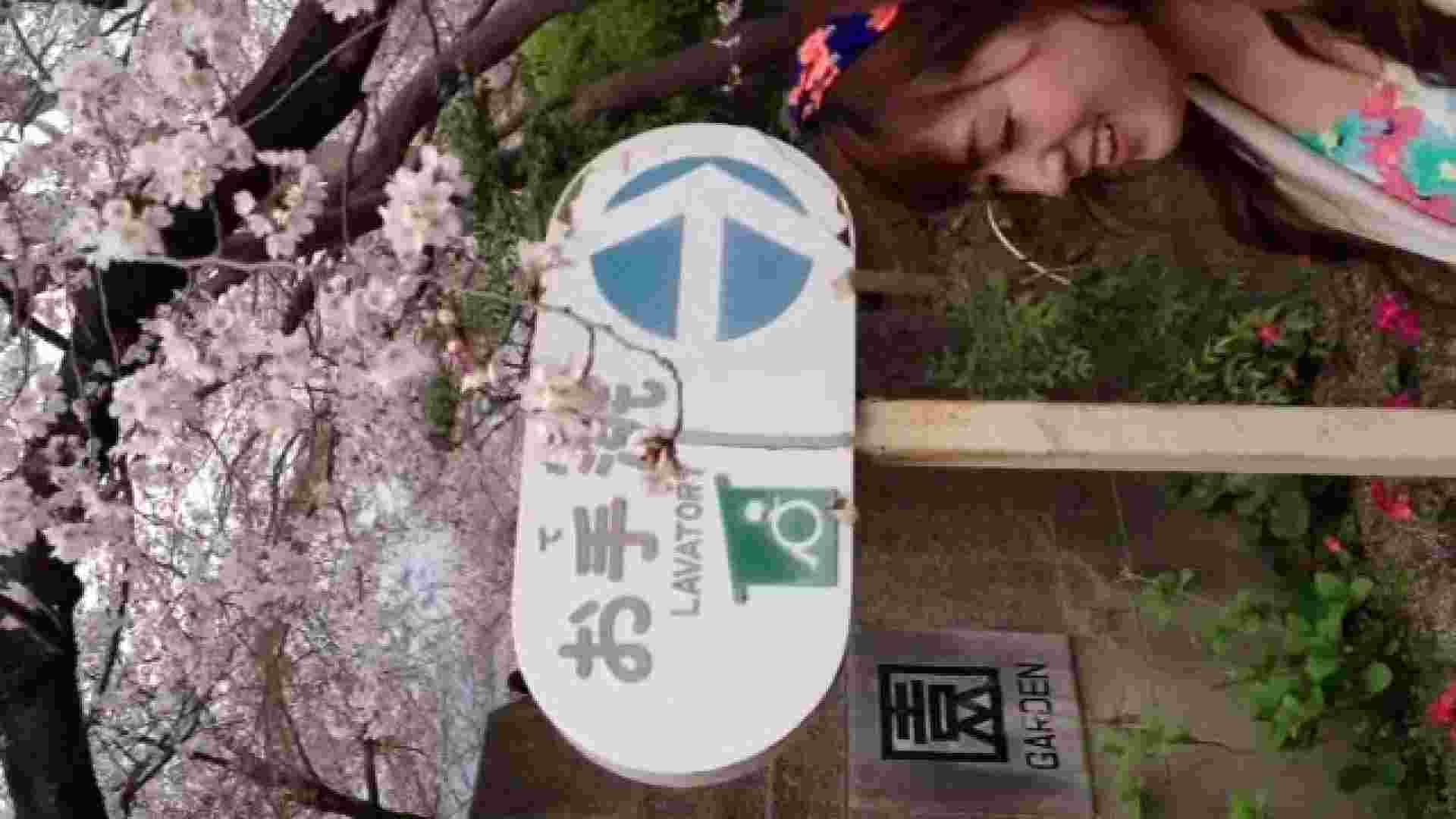 23(19日目)桜を見ながらお散歩 一般投稿  100連発 7