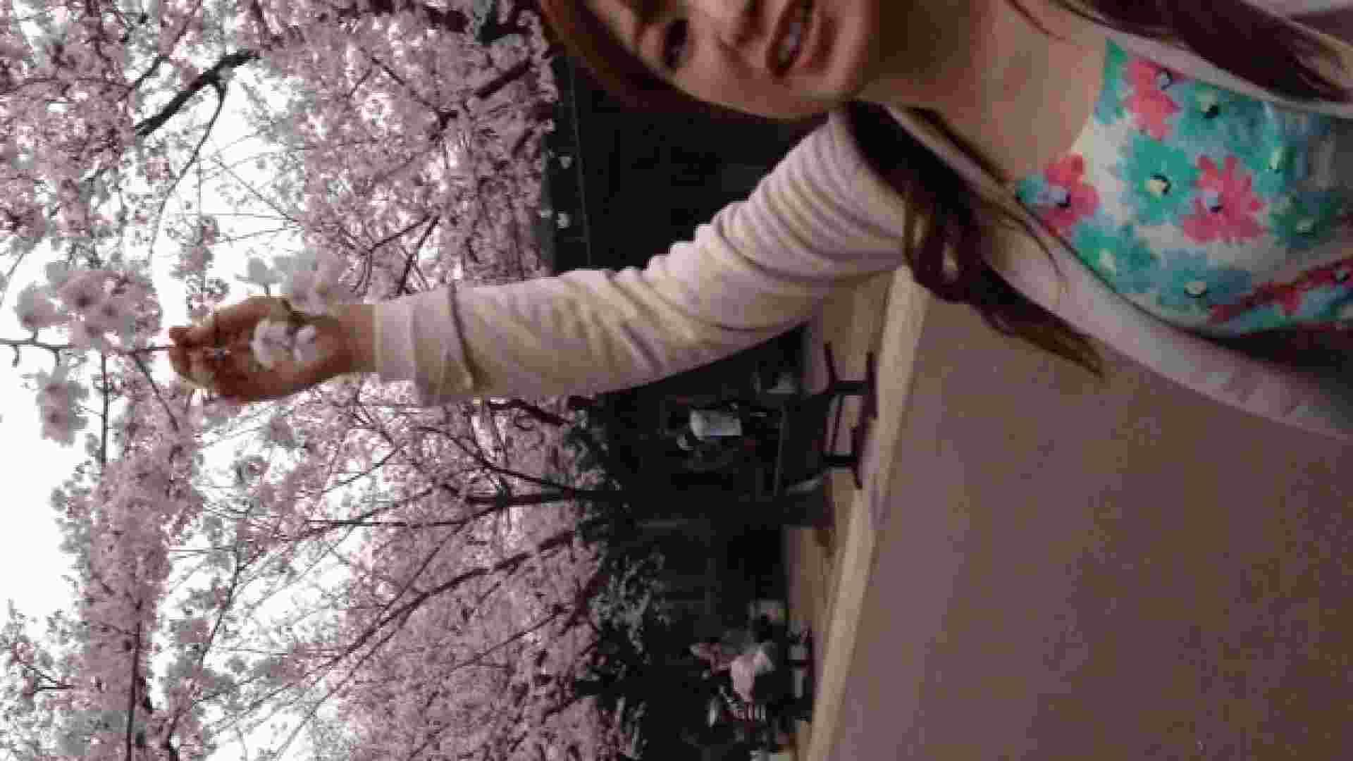 23(19日目)桜を見ながらお散歩 一般投稿  100連発 17