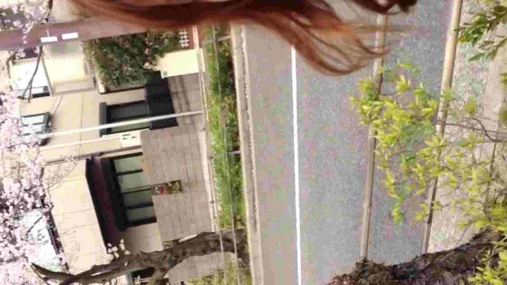 23(19日目)桜を見ながらお散歩 一般投稿  100連発 47