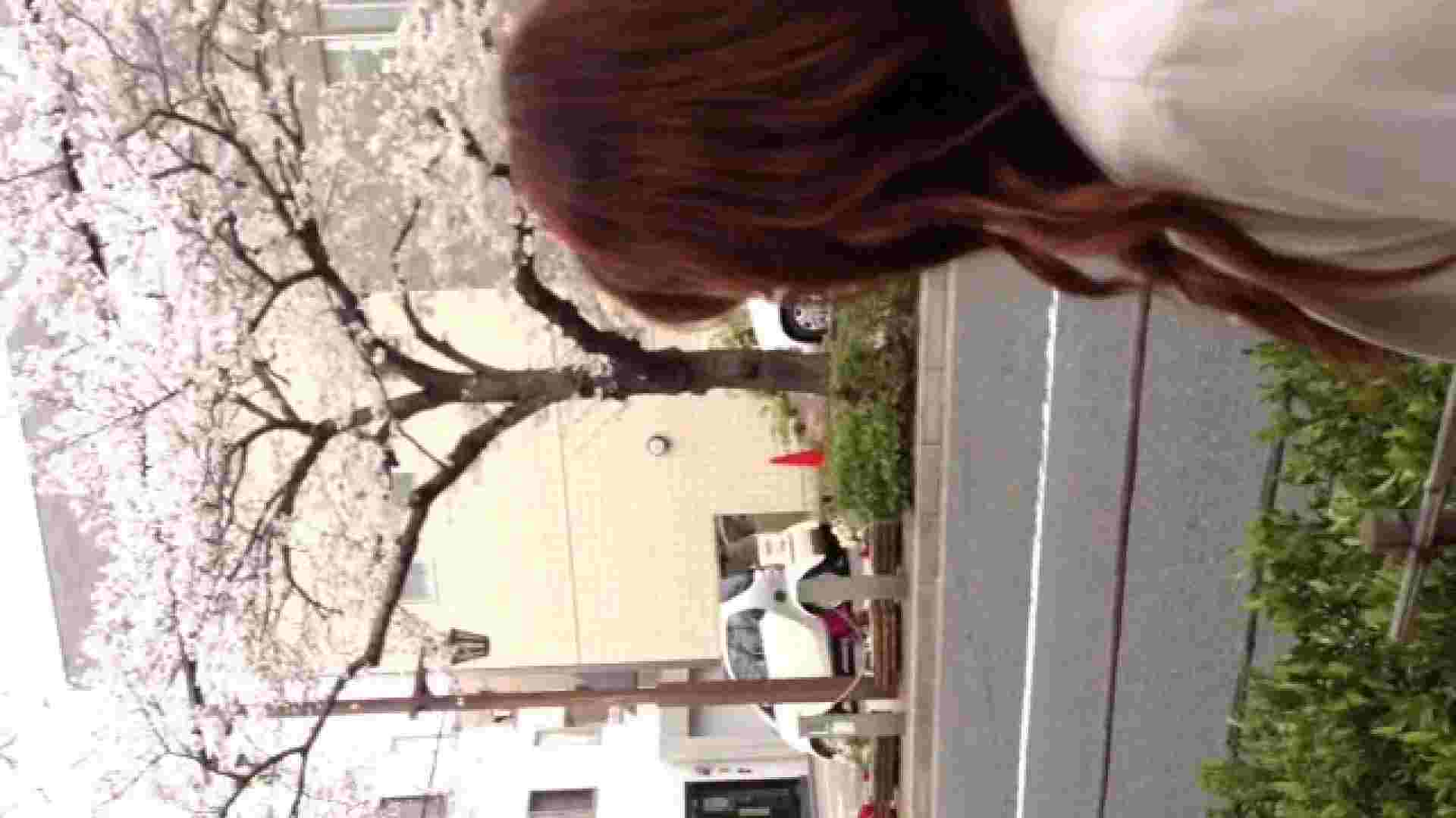 23(19日目)桜を見ながらお散歩 一般投稿  100連発 57