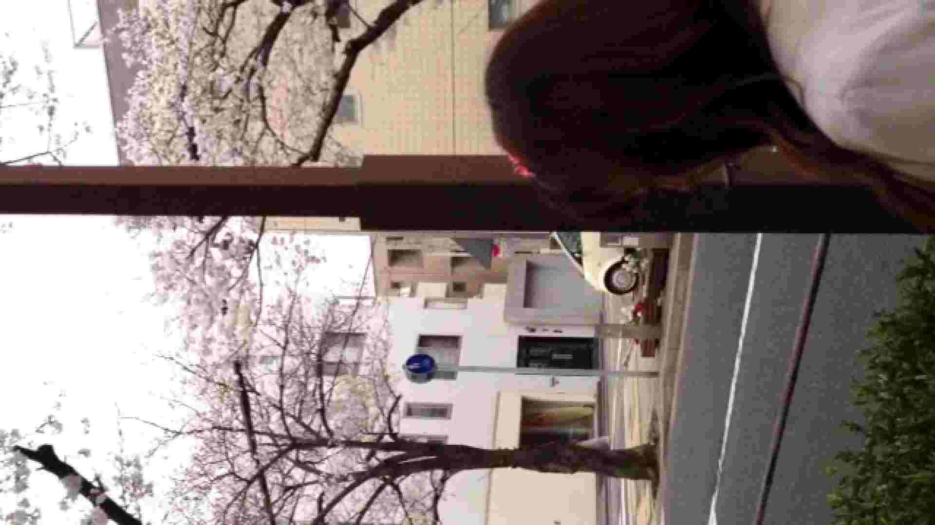 23(19日目)桜を見ながらお散歩 一般投稿  100連発 58