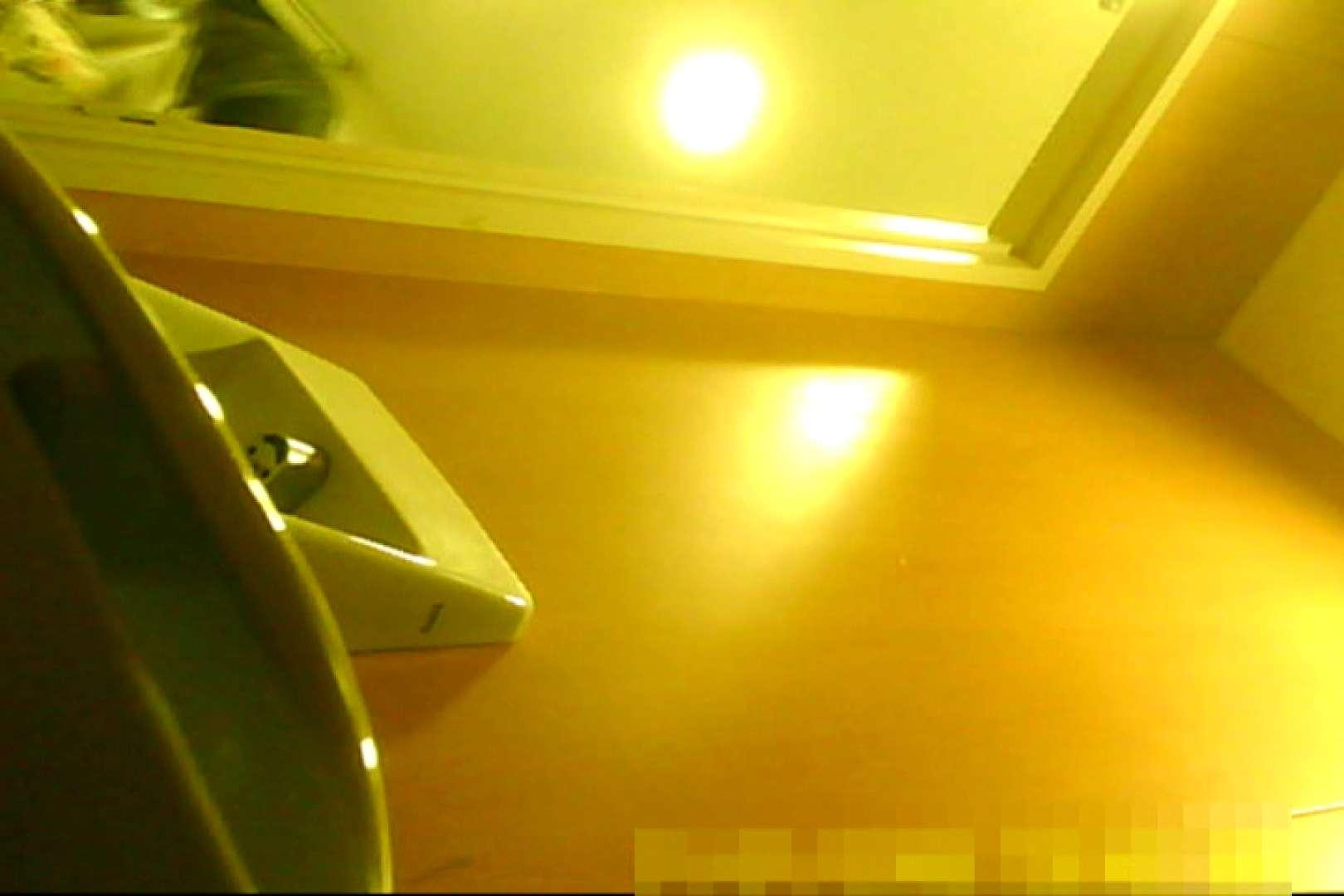 魅惑の化粧室~禁断のプライベート空間~29 プライベート  74連発 39