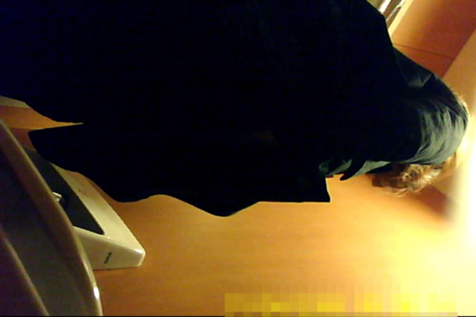 魅惑の化粧室~禁断のプライベート空間~29 プライベート  74連発 73